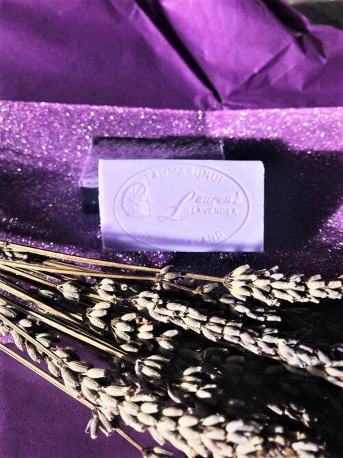 Lavender Square Soap
